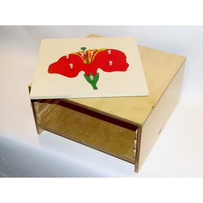 Cabinet 4 puzzle-uri botanica