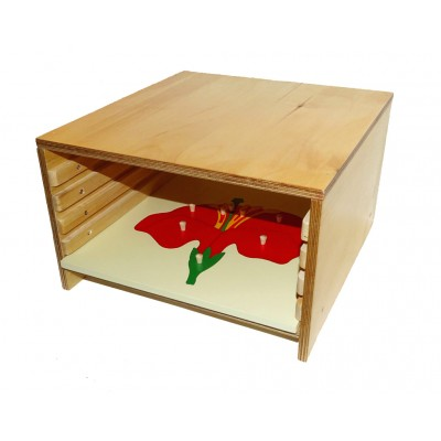 Cabinet 5 puzzle-uri - biologie